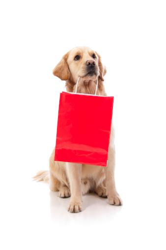 犬「かわいい犬のショッピングバッグを持つ」:スマホ壁紙(7)
