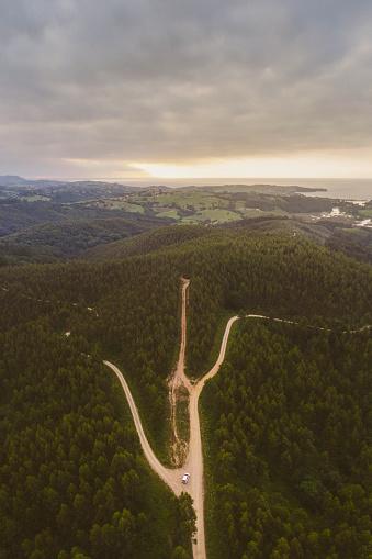 春「森林面積に複数の道路」:スマホ壁紙(16)