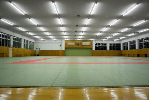 Martial Arts「Martial Arts Dojo」:スマホ壁紙(2)