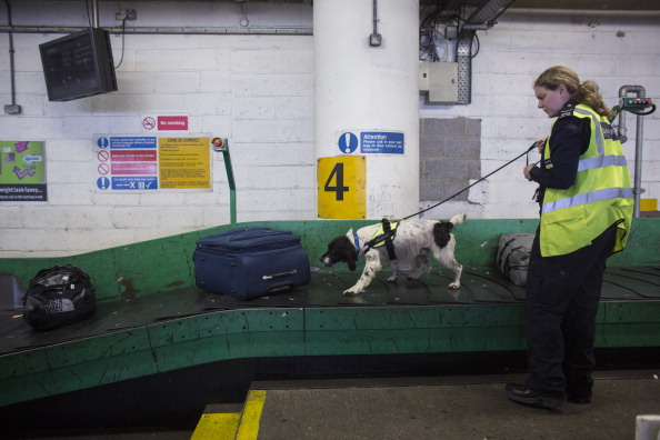 Luggage「Border Force Dogs In Operation At Gatwick Airport」:写真・画像(17)[壁紙.com]