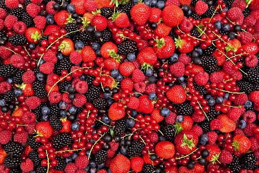 Gooseberry「colorful berry mix」:スマホ壁紙(12)