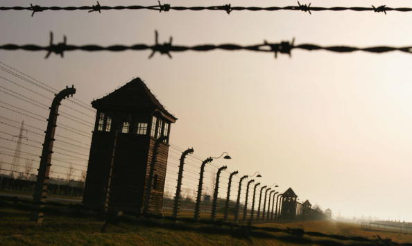 Holocaust「Preview For Sixtieth Anniversary Of The Liberation Of Auschwitz」:写真・画像(7)[壁紙.com]