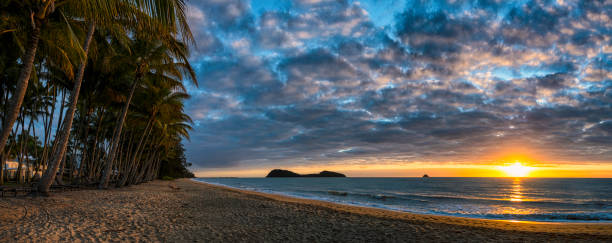 Sunrise Panoramic At Palm Cove, Queensland, Australia:スマホ壁紙(壁紙.com)