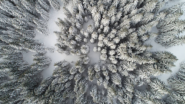 冬の山:スマホ壁紙(壁紙.com)