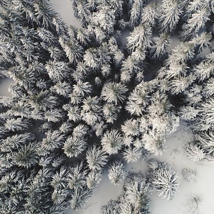 雪山「冬の山」:スマホ壁紙(8)
