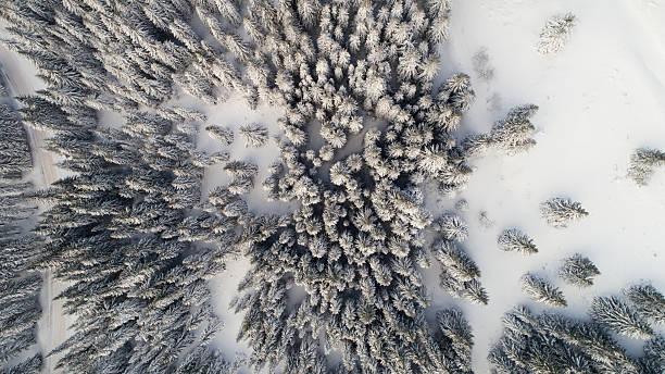 Winter in mountain:スマホ壁紙(壁紙.com)