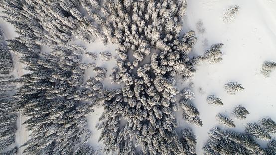 Frozen「Winter in mountain」:スマホ壁紙(19)