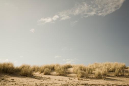 Cannon Beach「USA, Oregon, Cannon Beach, sand dunes」:スマホ壁紙(15)