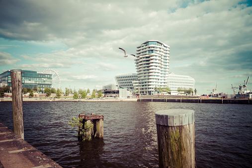 Seagull「Germany, Hamburg, HafenCity, Grasbrookhafen, Marco-Polo-Tower and Unilever House」:スマホ壁紙(17)