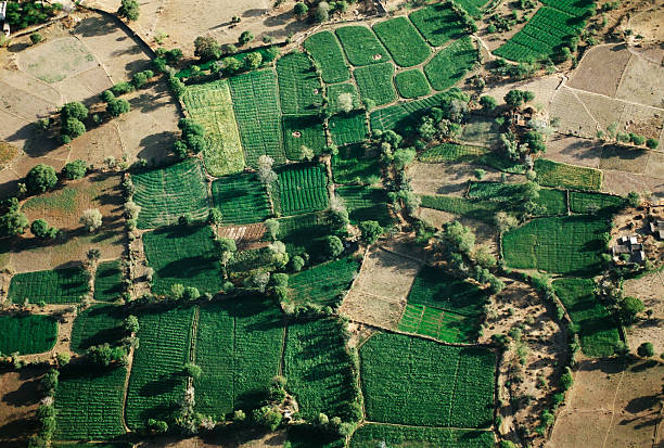 Farm Fields:スマホ壁紙(壁紙.com)