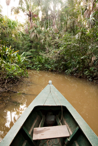 Amazon Rainforest「A wooden canoe made of Eucylptus tree floats in the amazon river and connecting tributary rivers in the rainforest.」:スマホ壁紙(6)