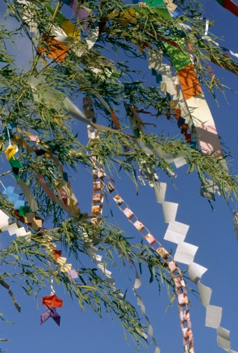 七夕「Paper Decorations Tied to Bamboo Fronds During the Tanabata (Star) Festival」:スマホ壁紙(13)