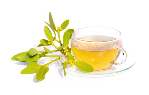 宿り木「tea mistletoe」:スマホ壁紙(1)