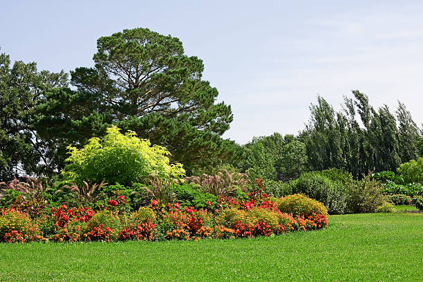 Orange and Red Formal Flower Garden:スマホ壁紙(壁紙.com)