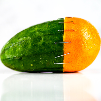 Harmony「Orange and cucumber stapled together」:スマホ壁紙(18)