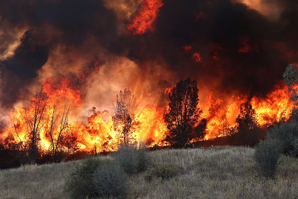 Grove「Rocky Fire Expands To 60,000 Acres In Drought-Ridden Northern California」:写真・画像(17)[壁紙.com]