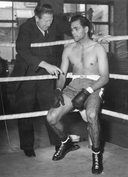 Monty Fresco「Australian Boxer」:写真・画像(13)[壁紙.com]