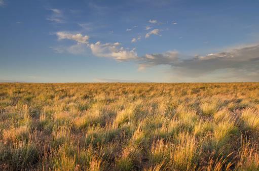 Idaho「Owyhee Desert prairie」:スマホ壁紙(7)