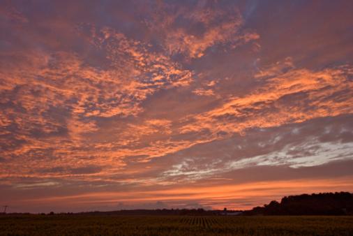 Rolling Landscape「North Carolina Burning Sky」:スマホ壁紙(8)