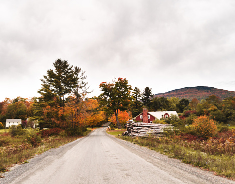 Maple Leaf「autumnal park in New England during the autumn」:スマホ壁紙(16)