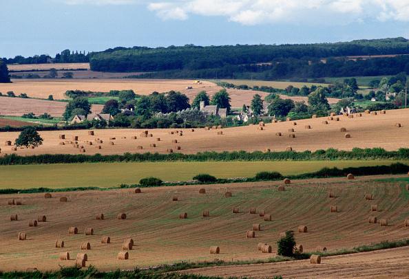 Combine Harvester「Swinbrook Village, Cotswolds, UK」:写真・画像(9)[壁紙.com]