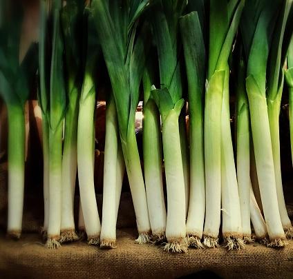 Market Stall「Row of fresh organic green leeks in a farm market stall」:スマホ壁紙(12)