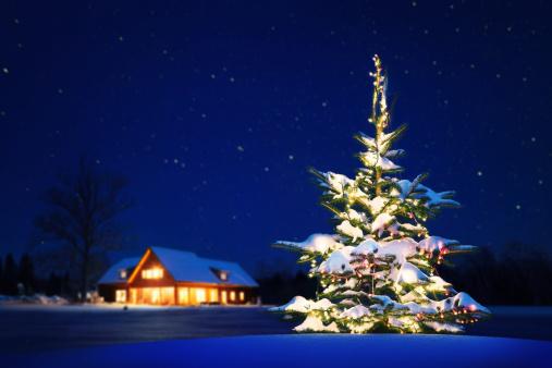お正月「自宅のクリスマス」:スマホ壁紙(18)