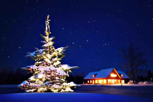雪「自宅のクリスマス」:スマホ壁紙(19)