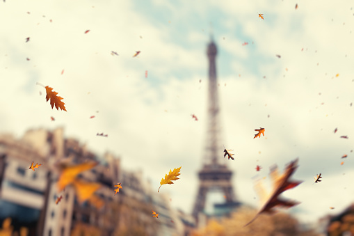 City Life「Autumn In Paris」:スマホ壁紙(0)