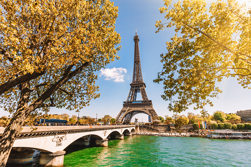 France「Eiffel Tower in Paris, France」:スマホ壁紙(8)