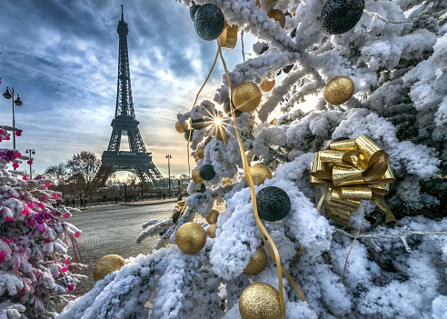 France「Eiffel Tower and decorated Christmas trees, Paris, France」:スマホ壁紙(5)