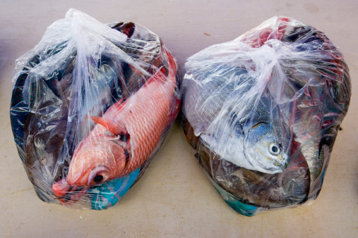 バイパス「Plastic bags with colourful fish at fish market.」:スマホ壁紙(18)