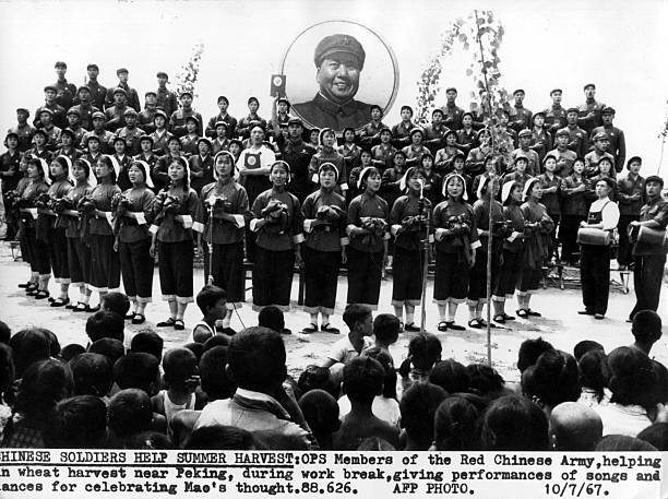 Mao Celebration:ニュース(壁紙.com)