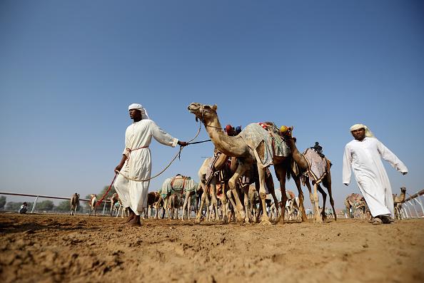Francois Nel「Daily Life in United Arab Emirates」:写真・画像(1)[壁紙.com]