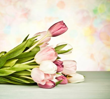 ガーリー「花、イースター、母の日」:スマホ壁紙(9)