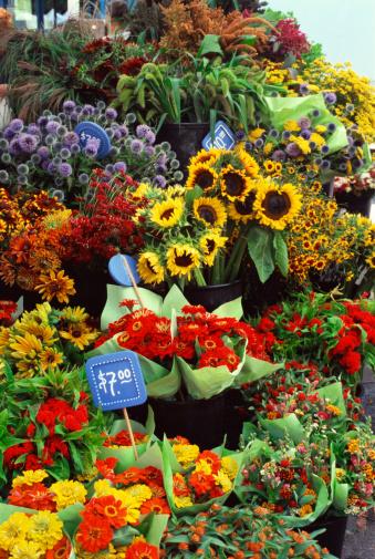 Flower Shop「Flowers for sale display」:スマホ壁紙(12)