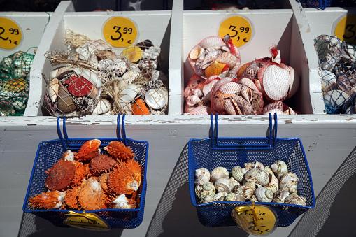 Gift Shop「sea shells」:スマホ壁紙(4)