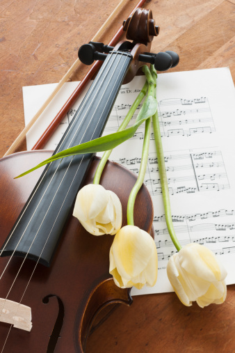 Violin Scroll「Violin and tulips on sheet music」:スマホ壁紙(8)