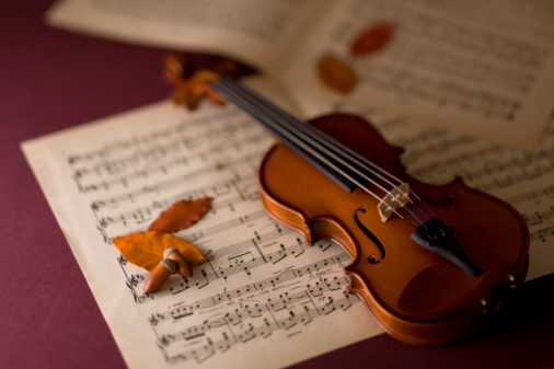 どんぐり セレクティブフォーカス「Violin and Acorn」:スマホ壁紙(18)