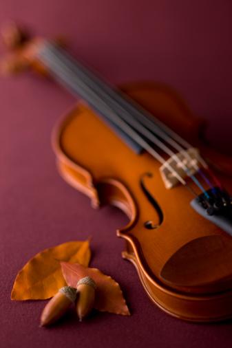 どんぐり セレクティブフォーカス「Violin and Acorn」:スマホ壁紙(19)