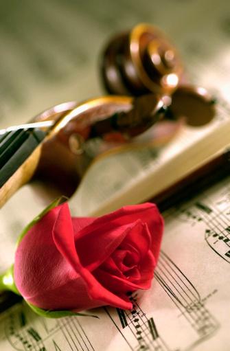 Violin「Violin and a rose and sheet music」:スマホ壁紙(11)