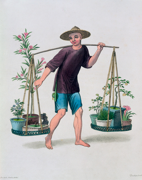 Balance「A Porter With Fruit Trees And Flowers' China 1800」:写真・画像(6)[壁紙.com]
