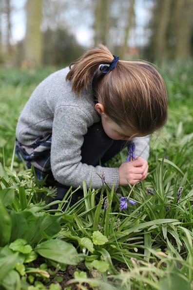 King's Lynn「Princess Charlotte Smelling A Bluebell」:写真・画像(8)[壁紙.com]