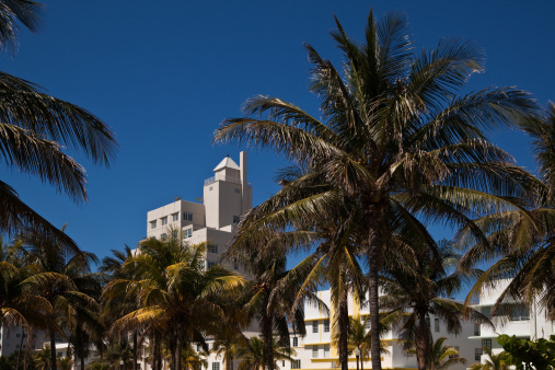 Miami Beach「(XXXL )オーシャンドライブ朝」:スマホ壁紙(10)
