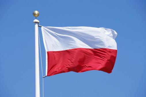 Pole「Flag of Poland」:スマホ壁紙(13)