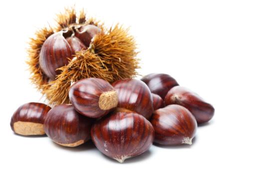 Chestnut「Chestnut on white」:スマホ壁紙(1)