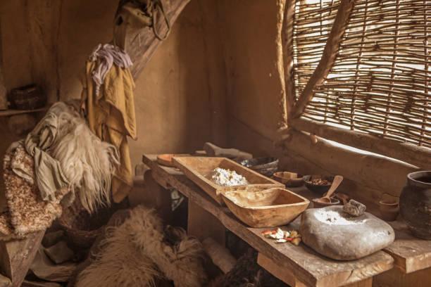 View of a viking settlement:スマホ壁紙(壁紙.com)