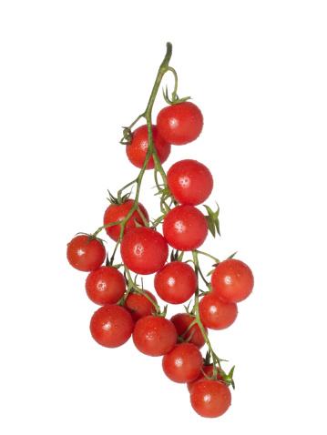 Cherry Tomato「Grape tomatoes」:スマホ壁紙(9)