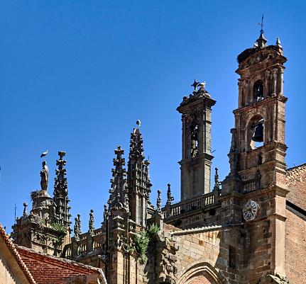 時計「Nests of storks above the gothics towers of the cathedral in Plasencia」:スマホ壁紙(10)