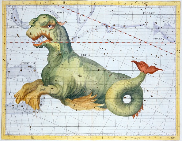 Aquatic Mammal「Constellation Of Cetus (The Whale) 1729」:写真・画像(18)[壁紙.com]